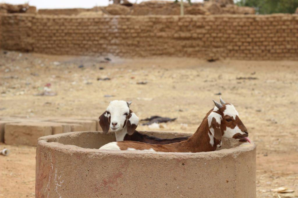 Puits d'eau - afrique