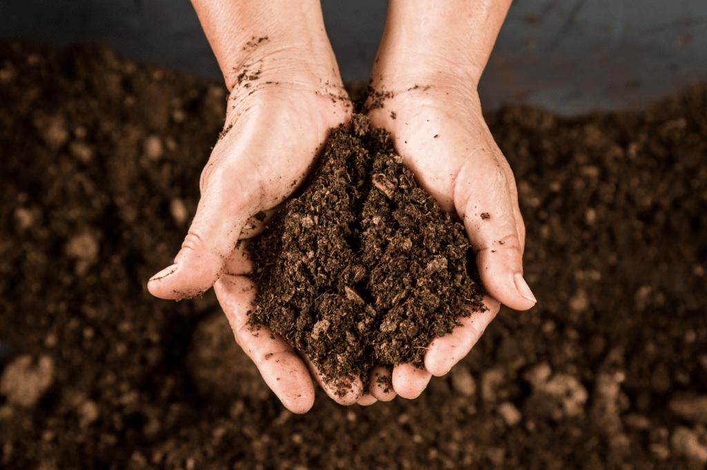 compost - geste écologique